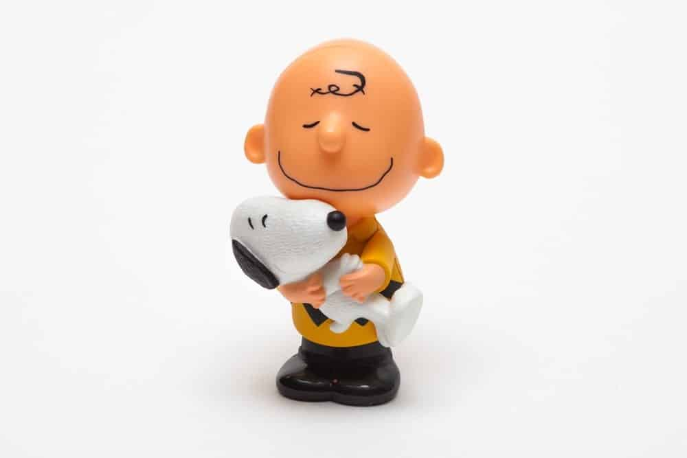 Charlie Brown and Snoopy from Peanuts cartoon