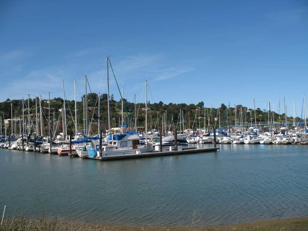 Boats docked at harbor in San Rafael, CA