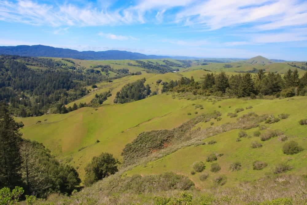 Novato, CA Nature Preserve