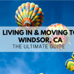 moving-to-windsor